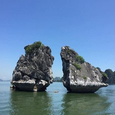 Bai Tu Long Bay Tours